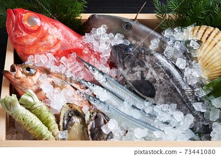 什錦鮮魚 73441080