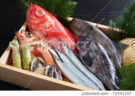 什錦鮮魚 73441207