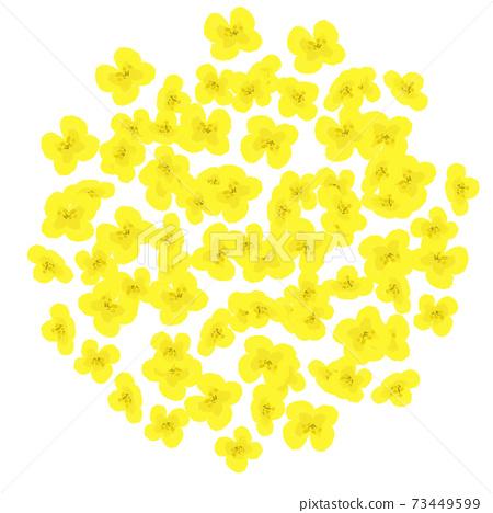 密集的油菜花圈框架圖 73449599