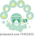 浣熊洗手 73452633