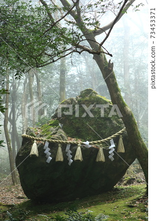 Banza with fog 73453371