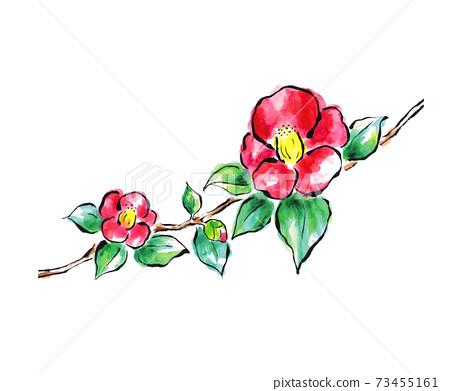 圖片字母樣式山茶花的插圖 73455161