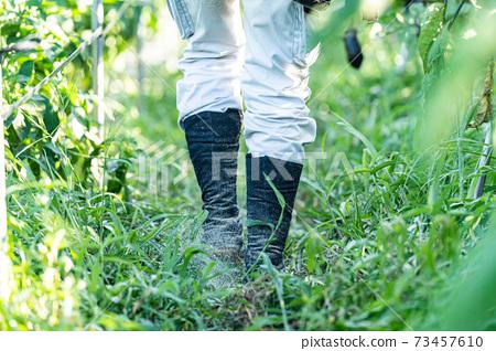 農業工作穿腳袋 73457610