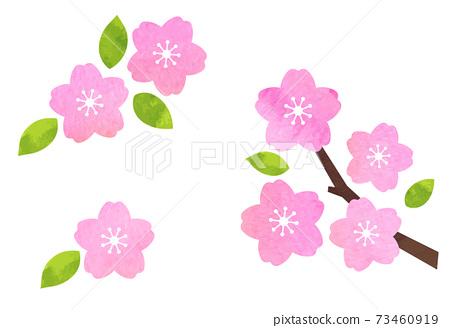 벚꽃 아이콘 세트 수채화 텍스처로 벡터 소재 73460919