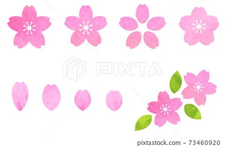 벚꽃 아이콘 세트 수채화 텍스처로 벡터 소재 73460920
