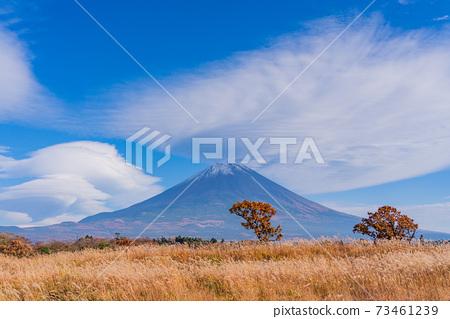 (靜岡縣)從朝霧高原看的富士山 73461239