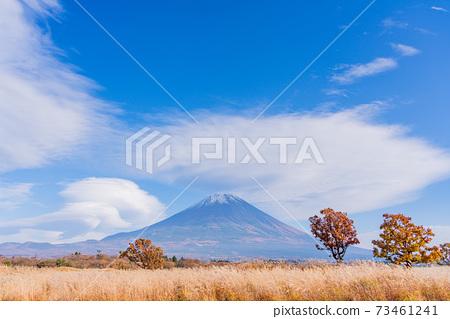 (靜岡縣)從朝霧高原看的富士山 73461241