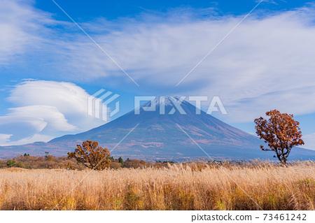 (靜岡縣)從朝霧高原看的富士山 73461242