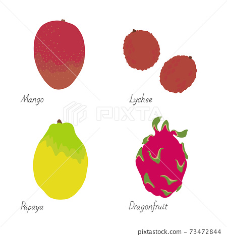 水果插圖芒果荔枝木瓜火龍果的名字 73472844