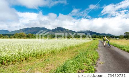 廣山高原秋天圖像 73480721