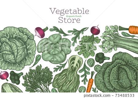 Hand drawn vintage color vegetables design. Organic fresh food vector banner template. Retro vegetable background. Traditional botanical illustrations. 73488533