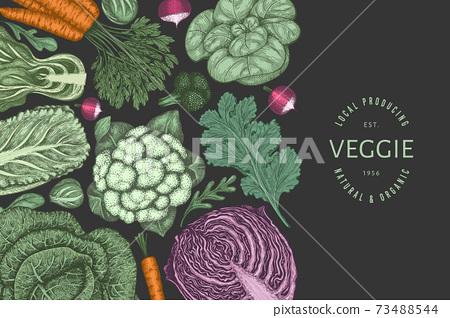 Hand drawn vintage color vegetables design. Organic fresh food vector banner template. Retro vegetable background. Traditional botanical illustrations. 73488544