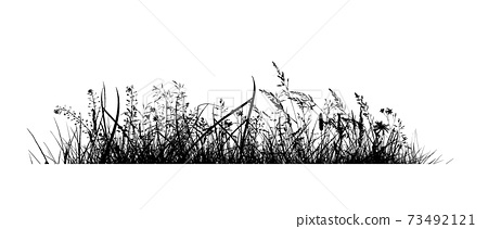 Abstract background with black silhouettes of meadow wild herbs and flowers. Wildflowers. Floral background. Wild grass. Vector illustration. 73492121