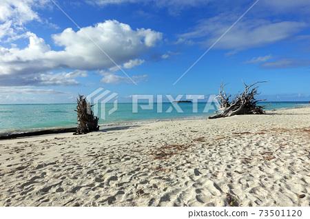 塞班島微沙灘 73501120
