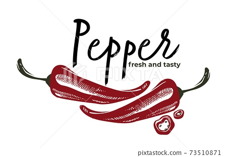 Pepper fresh and tasty herbs and spices vector 73510871