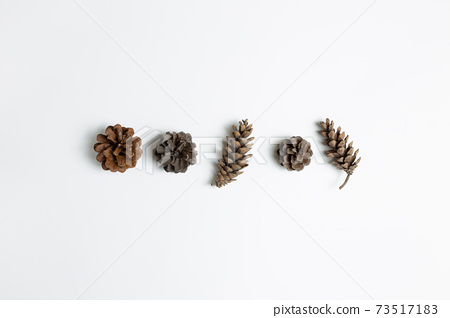 Dry pine cones on white background. flat lay, top view, copy space 73517183