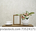 White coffee cup,wooden frame and Aglaonema houseplant(Chinese Evergreen) in modern flowerpot decoration on wood table with cement wall background 73524171