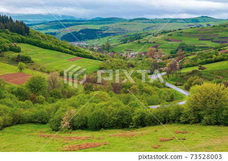 carpathian countryside in spring. beautiful rural landscape in mountain. wet grassy meadow on fresh morning. road winding through valley to village. distant ridge in the clouds 73528003