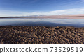 A view of Chaxa saltflat at sunset 73529519