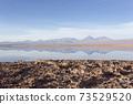 A view of Chaxa saltflat at sunset 73529520
