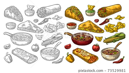 Mexican traditional food set with Guacamole, Enchilada, Burrito, Tacos, Nachos 73529981
