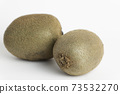 Fresh kiwi fruit on white background 73532270