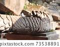 龍設計的供水龍頭2(Wat Phu Temple) 73538891