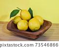 Fresh lemon 73546866