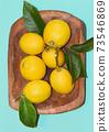 Fresh lemon 73546869