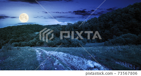 dirt road through forested countryside at night. beautiful summer rural landscape in mountains. adventure in nature scenery in full moon light 73567806