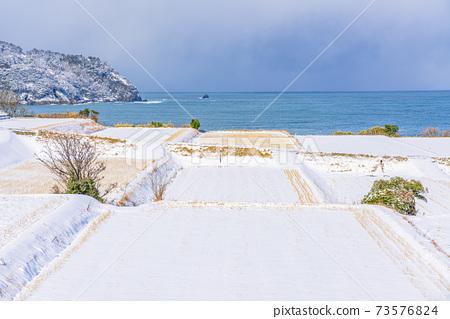 교토, 계단식 논, 겨울 73576824
