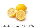 레몬 73583265