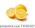 Lemon 73583267