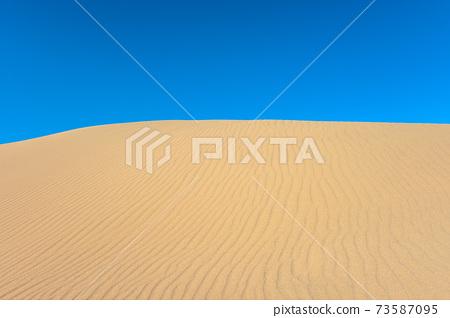 沙塵暴風冠 73587095