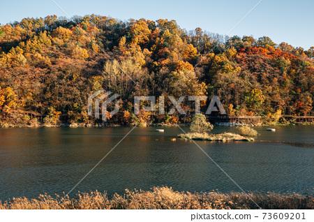 Nakdong river and autumn mountain in Andong, Korea 73609201