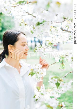 白櫻花和年輕女子 73611897