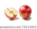 蘋果 73615825