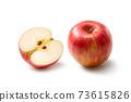 蘋果 73615826