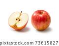 Apple 73615827