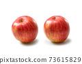 蘋果 73615829