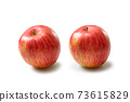 Apple 73615829