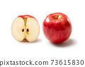 Apple 73615830