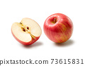 蘋果 73615831