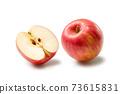 Apple 73615831