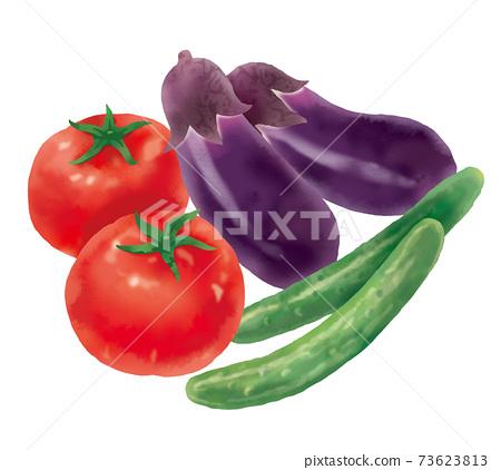 番茄 西紅柿 水彩畫 73623813