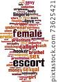 Female escort word cloud 73625421