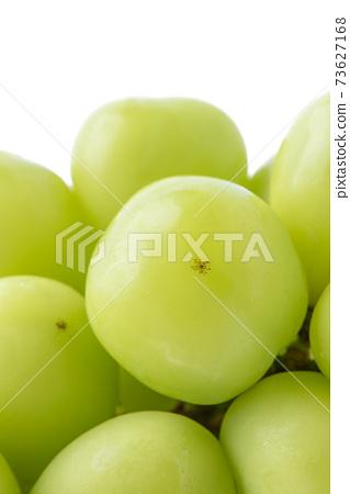 麝香葡萄 岡山 Shine Muscat grape シャインマスカット 岡山 73627168