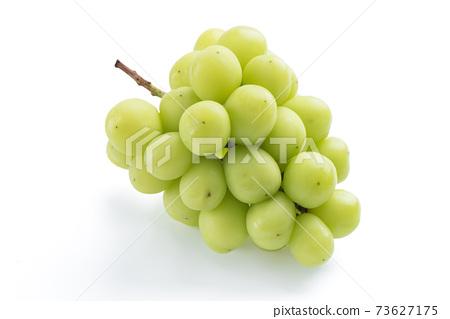 麝香葡萄 岡山 Shine Muscat grape シャインマスカット 岡山 73627175