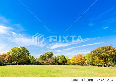 가을의 공원 교외의 주택지 73631213