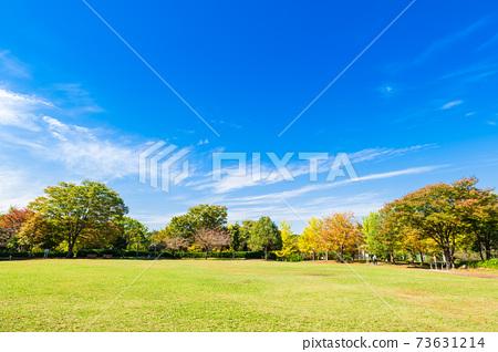가을의 공원 교외의 주택지 73631214